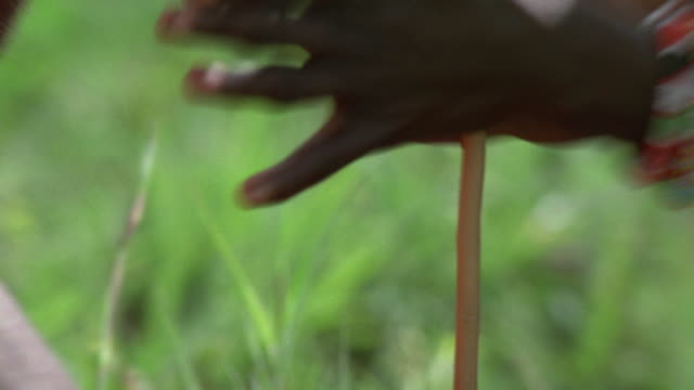 close up hands of masai tribesman spinning stick in order to make fire / zoom out 2 tribesmen / africa - masai stock videos and b-roll footage