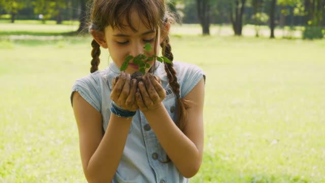 vídeos de stock e filmes b-roll de close up hands of young girl recive young plant - espalhar