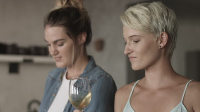 close up, happy lesbian couple drink white wine - bicchiere da vino video stock e b–roll