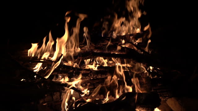 close up hd video of campfire of bonfire in nature during night - selimaksan stock videos & royalty-free footage