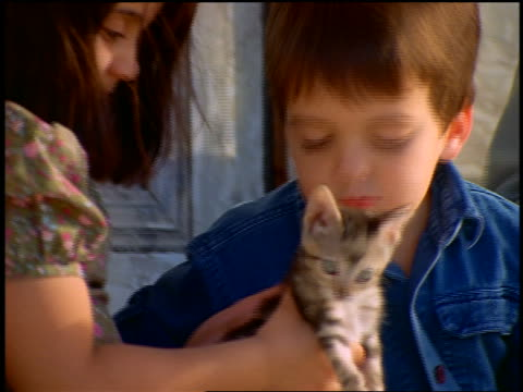 close up hispanic boy + girl kissing + petting kitten - stroking stock videos & royalty-free footage