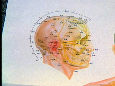close up swish pan human skull drawing with markings in chinese - メディカルイラスト点の映像素材/bロール