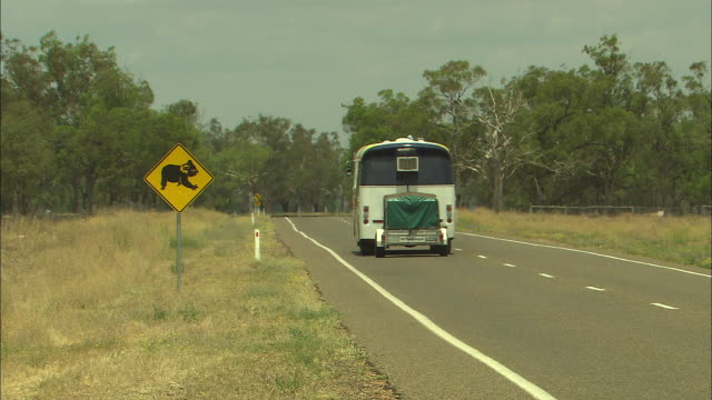 close up koala crossing visual road warning sign zoom out as bus passes sign on road away from camera car comes in other direction towards camera... - road warning sign stock videos & royalty-free footage