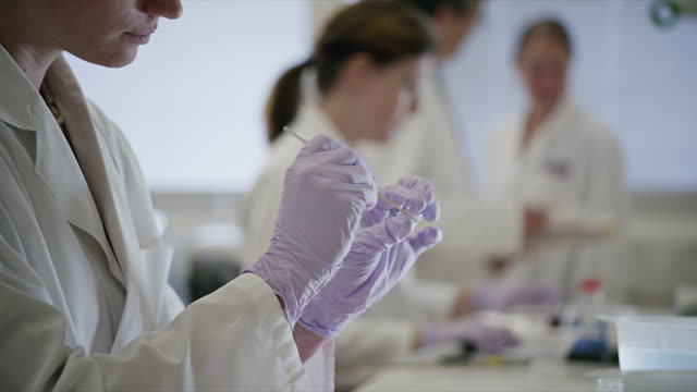 close up, laboratory technician conducts modern scientific testing - laboratory stock-videos und b-roll-filmmaterial