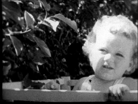movie close up lindbergh baby sitting in crib outdoors playing with leaves - anno 1931 video stock e b–roll