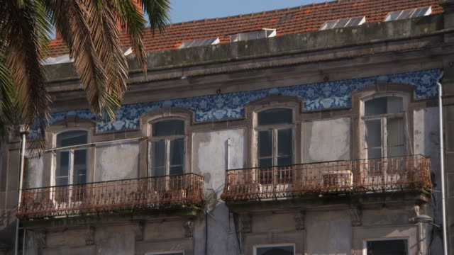 close up: looking up at ornate building details with a palm tree blowing - ヤシ点の映像素材/bロール