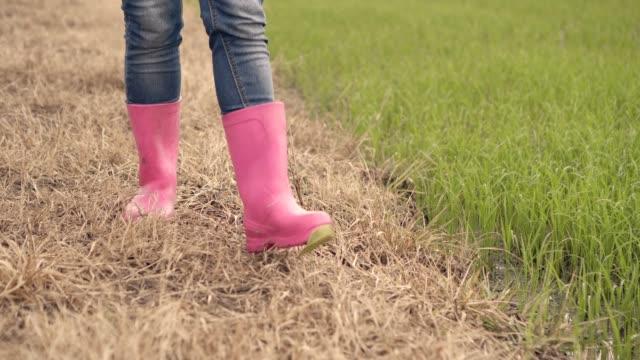 close up low shot pink shoe boot woman farmer walking in green rice farm