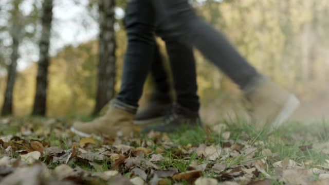 Close up, man and woman feet walking on autumnal leaves