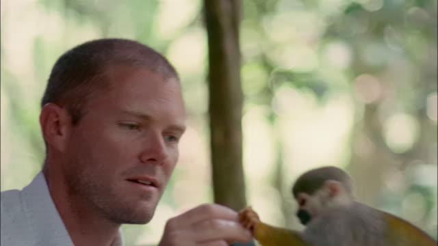 Close up man feeding orange slice to common squirrel monkey in the Amazon / Brazil