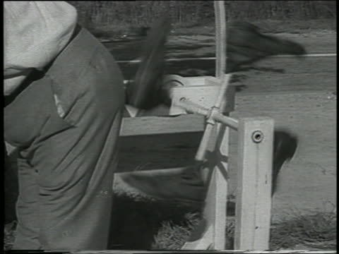 b/w 1938 close up man getting kick in seat of his pants by contraption - pants stock videos and b-roll footage