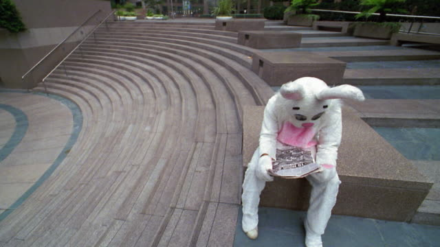 Close up man in rabbit costume reading newspaper on bench before throwing it on ground and walking away/low angle