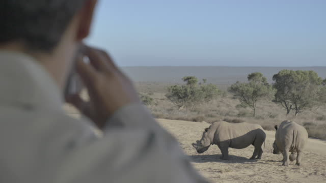 close up, man takes photo with phone of rhinoceros - großwild stock-videos und b-roll-filmmaterial