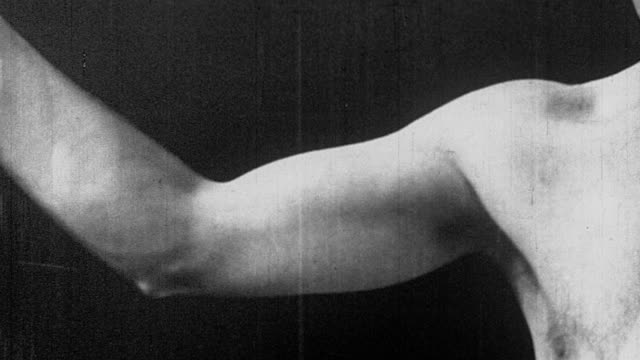 b/w 1926 close up man's arm bending at elbow with animation superimposed to demonstrate blood flow + muscles - inarcare la schiena video stock e b–roll