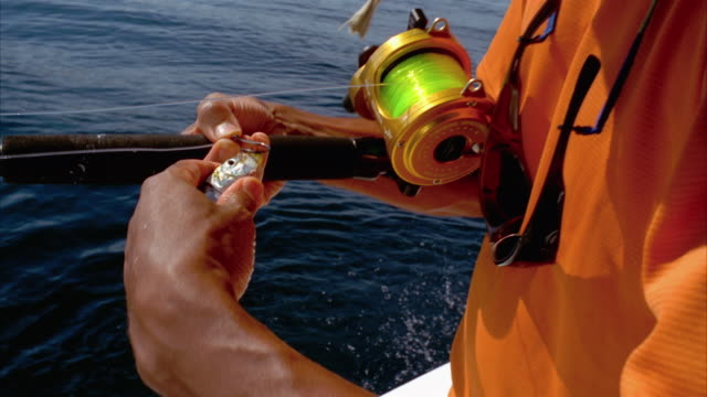 close up man's hands picking fish out of bucket, baiting hook and casting fishing line into ocean/ california - fishing line stock videos & royalty-free footage