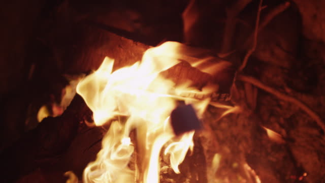 close up, marshmallow roasting over fire - marshmallow video stock e b–roll