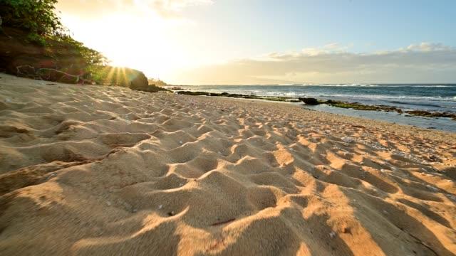 close up movement along a sandy beach towards the sunny shoreline - 自然美点の映像素材/bロール
