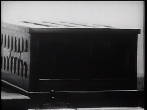 b/w 1939 close up multiple slices of toast popping out of toaster / documentary - toaster appliance stock videos & royalty-free footage