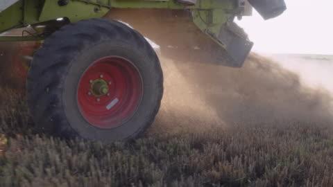 stockvideo's en b-roll-footage met sluit omhoog van een combineer harvester die het gewas tijdens het oogstseizoen in een organische landbouwbedrijf op een heldere zonnige dag verzamelt. tractor die tarwe oogst. - tractor