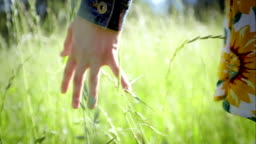 Close Up Of A Girl's Hand Feeling Tall Grass Between Her Fingers. Slow Motion. Lens Flare