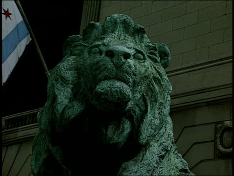 Close Up of a Lion Statue Outside of The Art Institute in Chicago