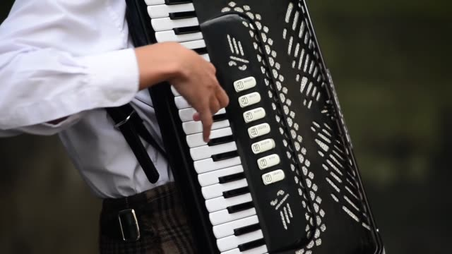 vídeos y material grabado en eventos de stock de close up of a young man's accordion street entertainers perform on edinburgh's royal mile during the city's festival fringe on august 21 2013 in... - acordeonista
