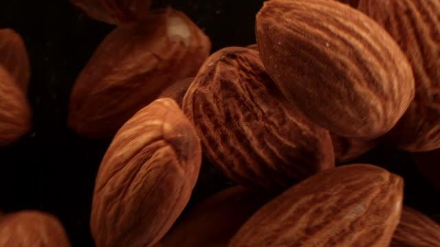 vídeos de stock e filmes b-roll de close up of almonds in the air - fruto seco