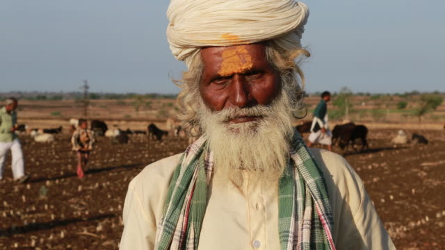 close up of an indian shepherd with turban and in traditional clothes at work. as hindu man he is signed with a yellow tilaka. - 羊飼いの棒点の映像素材/bロール