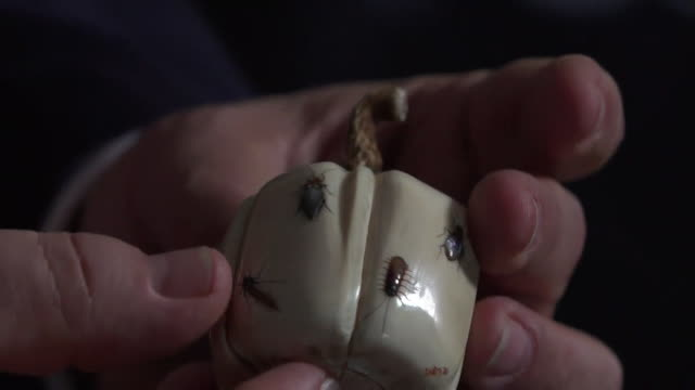 close up of an ornament made from elephant ivory and decorated with insects - rare stock videos & royalty-free footage
