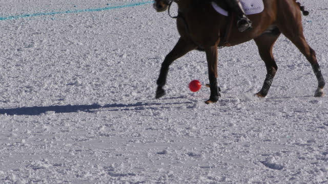 Close up of ball and horses during a polo match at the Winter Polo World Cup on January 29 2016 in St Moritz