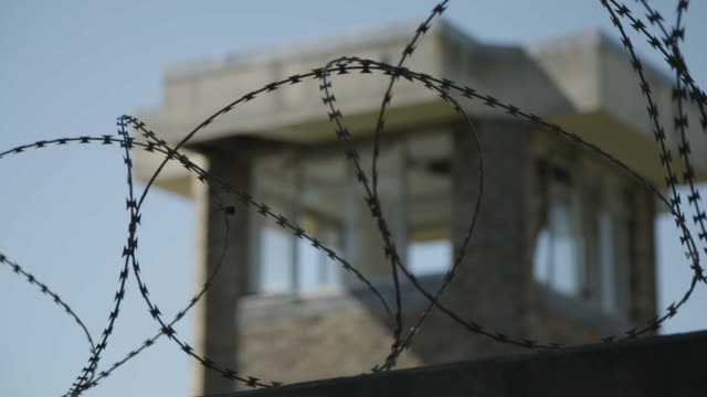 close up of barbed wire - barbed wire stock videos & royalty-free footage