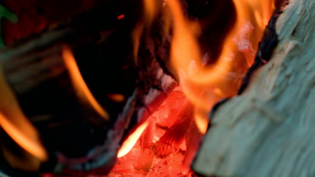 close up of burning wood in grill - grigliare video stock e b–roll