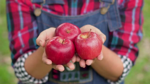close up of farmer holding apple in hand - apple stock videos & royalty-free footage