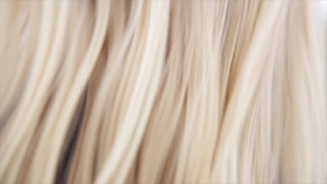 close up of female surfers hair - blonde hair stock videos & royalty-free footage