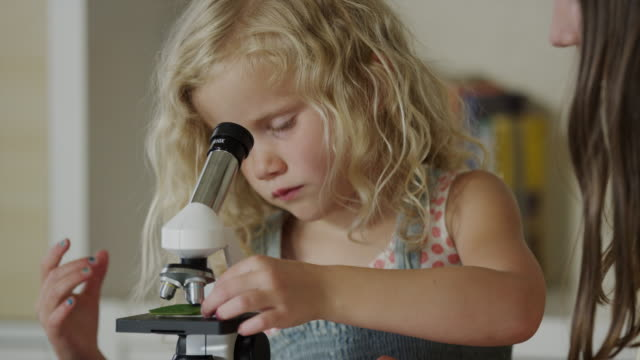 close up of girls examining specimen with microscope / orem, utah, united states - girls wearing see through clothes stock videos and b-roll footage