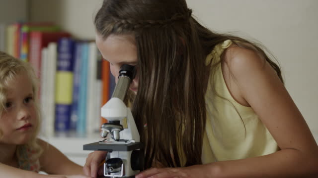 close up of girls using microscope and writing notes / orem, utah, united states - orem utah stock videos & royalty-free footage