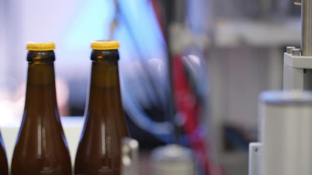 close up of glass beer bottles moving along a conveyor belt - 数個の物点の映像素材/bロール
