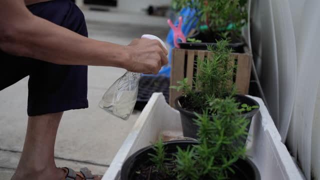 stockvideo's en b-roll-footage met close-up van hand midden oude mensen die in tuin thuis werken - men