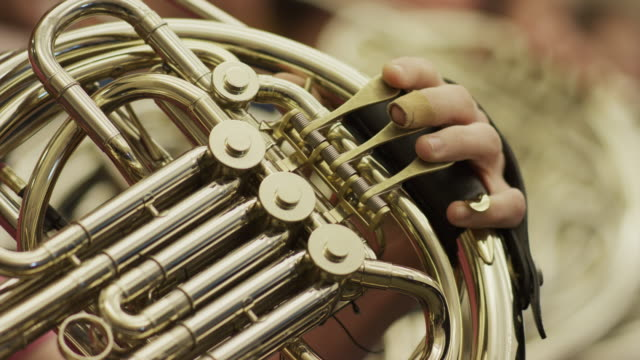 close up of hand of teenager playing french horn / american fork, utah, united states - french horn stock videos and b-roll footage