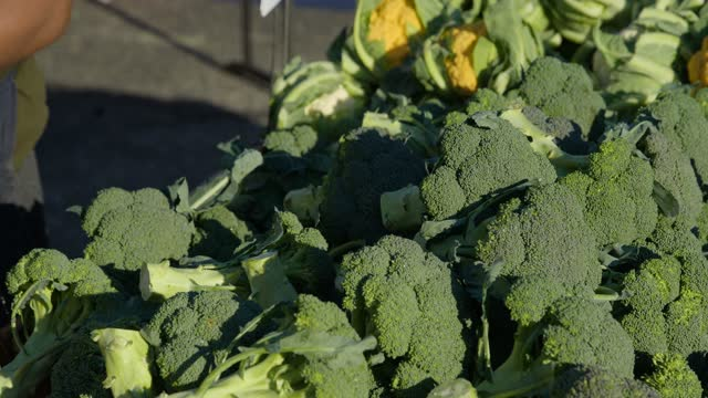 close up of hand placing fresh broccoli during fall vendors on halloween slow motion - crucifers stock videos & royalty-free footage