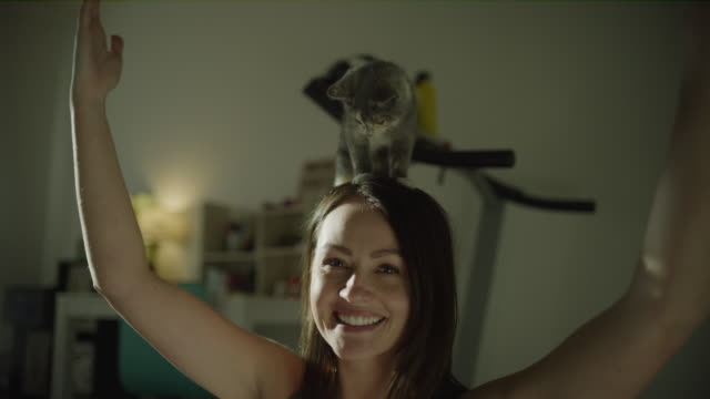 vidéos et rushes de close up of happy woman balancing cat on her head and looking at camera / murray, utah, united states - tenir