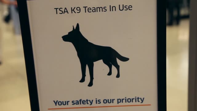 close up of k9 sign at security gate. tsa demonstrates new screening program at miami international airport on may 03, 2013 in miami, florida - イヌ科点の映像素材/bロール