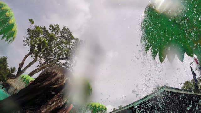 vidéos et rushes de close up of little girl under waterpark palm tree. - kelly mason videos