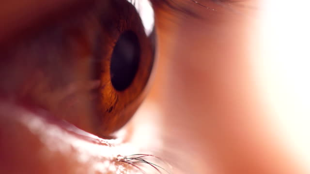 close up of man eye - anatomy stock videos & royalty-free footage