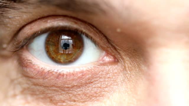 vídeos y material grabado en eventos de stock de cerrar de ojos marrones de hombre - ojo humano
