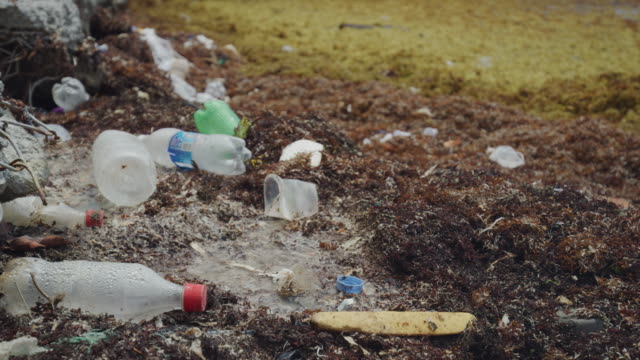 close up of plastic bottles littering ocean shore / clifton, union island, st. vincent and the grenadines - littering stock videos & royalty-free footage