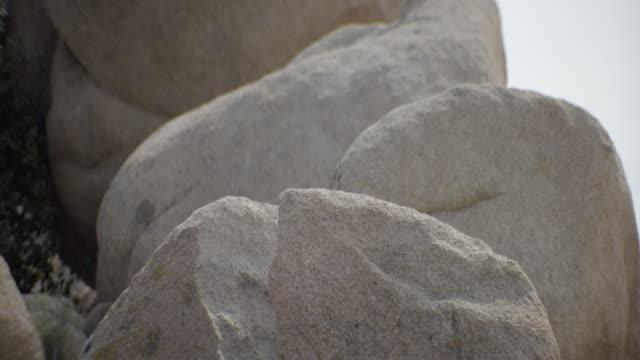 vídeos y material grabado en eventos de stock de close up of rocks in desert - menos de diez segundos