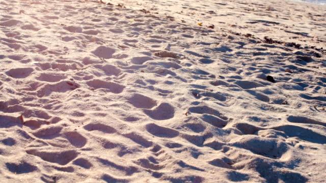 砂浜のクローズ アップ - 鎮静薬点の映像素材/bロール