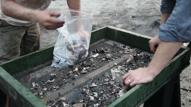 close up of sieve used by archeologists archaeologists with the archaeological and historical conservancy work on excavating a site where the... - baufahrzeug stock-videos und b-roll-filmmaterial