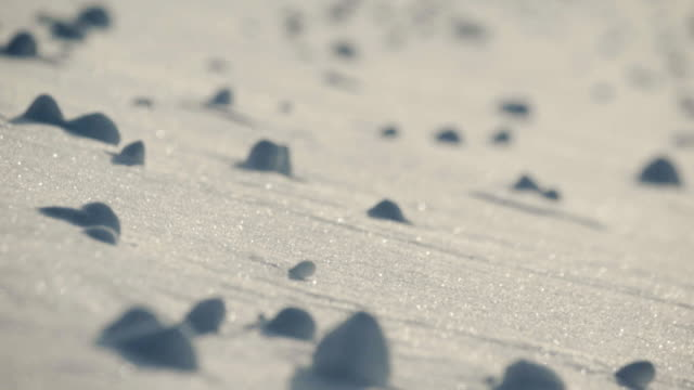 vidéos et rushes de close up of snowy hillside with rocks - perception sensorielle