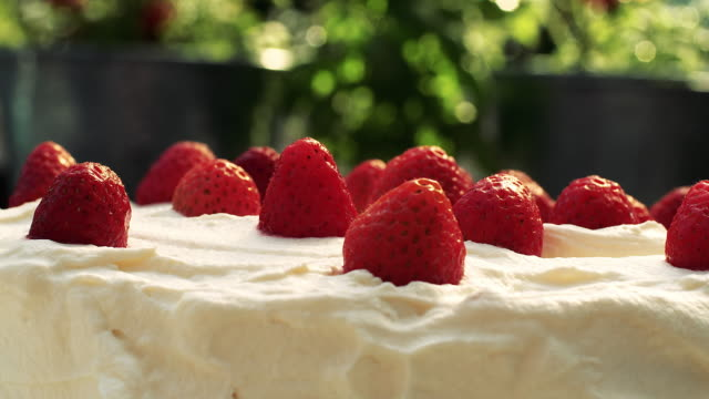 close up of strawberry cake with cream in the garden - snack stock videos & royalty-free footage